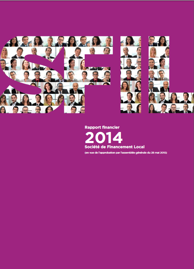 Publication du rapport financier 2014